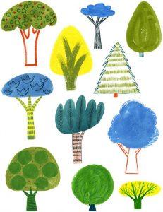 Écologie Nature