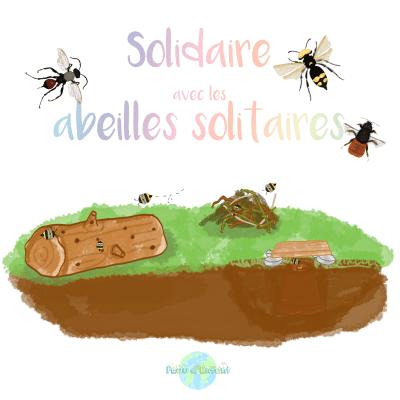 Solidaire avec les abeilles solitaires